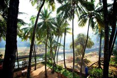 13. Agonda Palace Resort_River View -