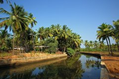 15. Agonda Palace Resort_River View Opp. Resort -