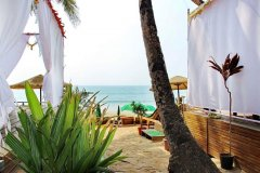 Art Resort View From Superior Cottages Palolem Beach Goa.