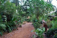 Bhakti Kutir  One of the beautiful pathways inside Bhakti Kutir in Colomb Bay, Goa