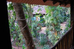 Bhakti Kutir  - The view from the balcony of a cabana at Bhakti Kutir in Colomb Bay, Goa
