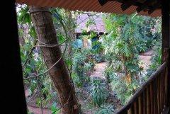 Bhakti Kutir  - The view from the balcony of a cabana at Bhakti Kutir in Colomb Bay, Goa