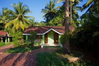 Dunhill Resort Agonda Beach Non AC Garden View Rooms