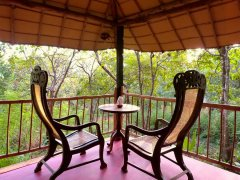 Khaama Kethna Jungle Resort Tree Top Cottage Balcony Agonda Beach South Goa