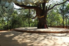 Khaama Kethna Jungle Resort Yoga School Area Agonda Beach South Goa