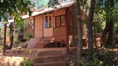 Khaama Kethna Jungle Resort Cabana Deluxe Agonda Beach South Goa