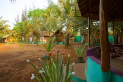 Tutti Garden Bungalows - Agonda Beach, Goa - Main -