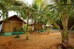 Tutti Garden Bungalows - Agonda Beach, Goa - Double Room Bungalows -