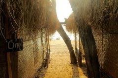 Bamboo Yoga Retreat Patnem beach Goa.