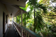 Green Inn Palolem Deluxe Double AC Rooms Balcony View -