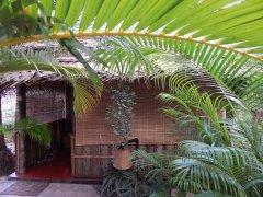Palm Tree Goa Resort Garden View Rooms Patnem Beach Goa. -